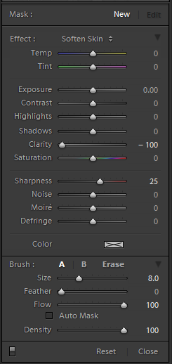 lightroom-tutorials-adjustment-brush-panel